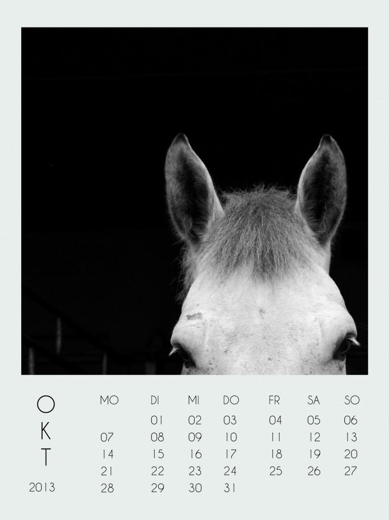 katharina_schafner_kalender_okt2013